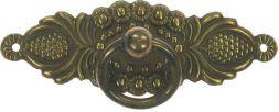 51972 Türschild m. Ring 73x25 mm