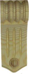 Kieferschnecke, 135x49 mm