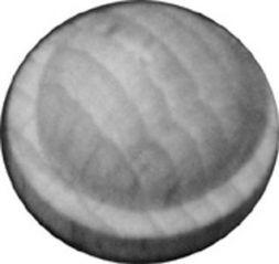 Hütchen -Birke-, Ø 20 mm